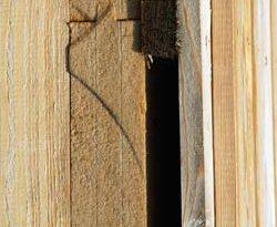 Holzfaserdämmstoffen und Holzfaser-Wärmedämmverbundsystemen (WDVS)